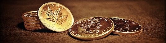 how to prepare for economic collapse with gold coins