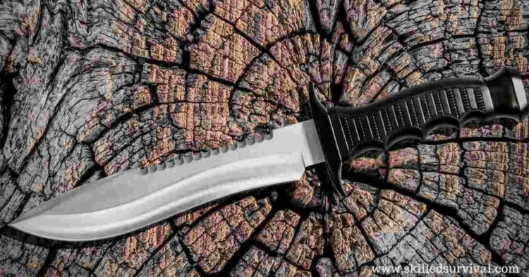Best Bowie Knife (and Key Features) On The Market Today